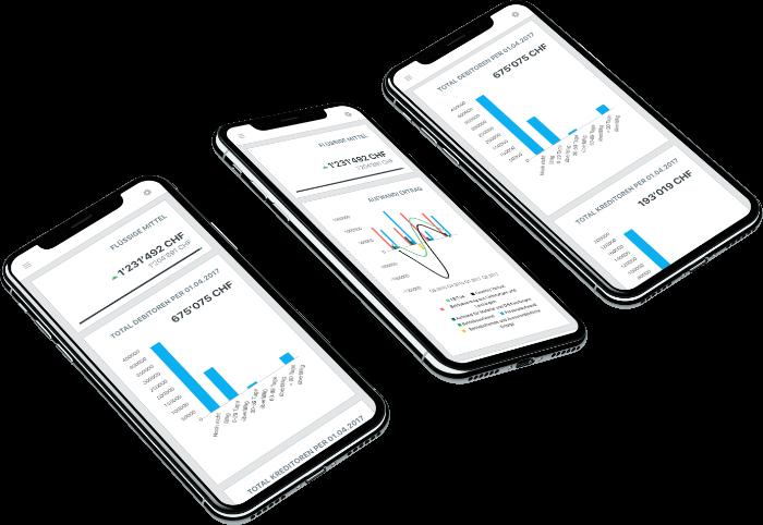 Online-Buchhaltungs-Service Mobile-App