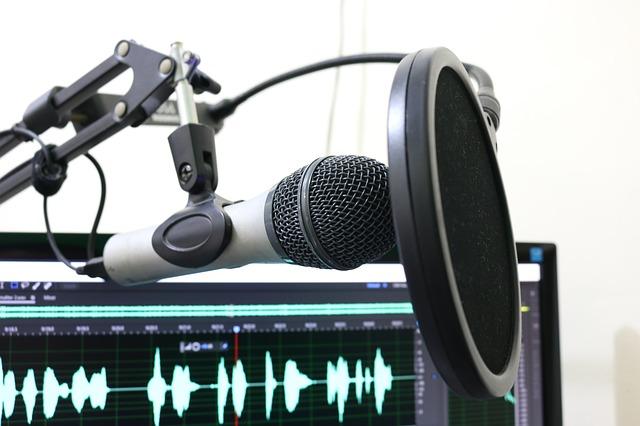 Finanzielle Beratung für Later Stage Startups - Podcast