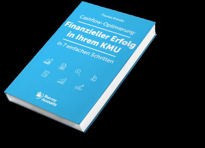 E-Book Finanzieller Erfolg in Ihrem KMU Cashflow-Optimierung